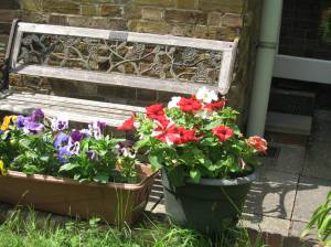 Garden Bench with flowers