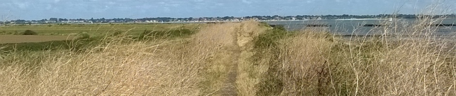 Sea wall path under wide Essex sky